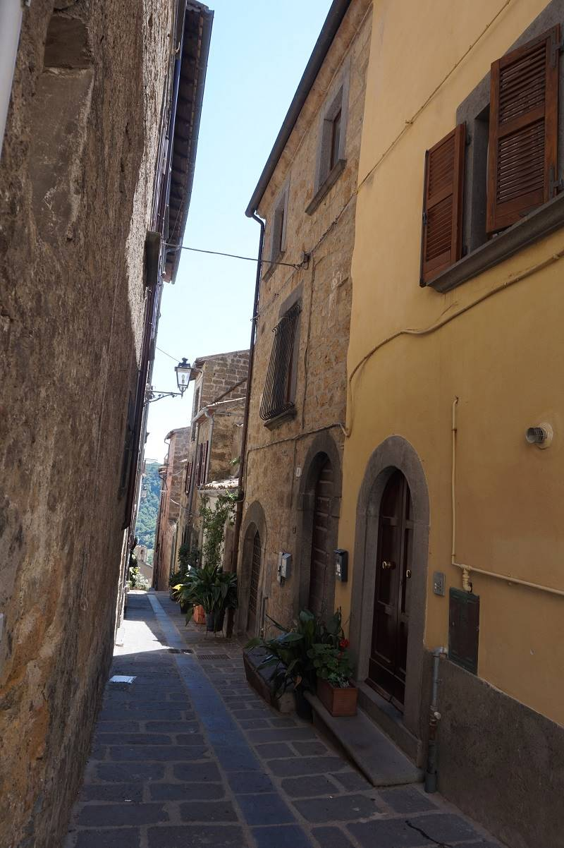 Strada d' ingresso