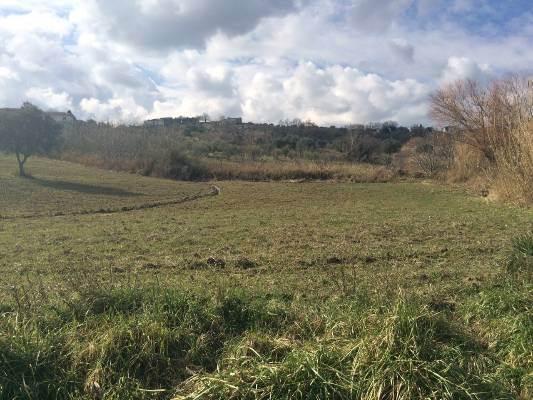Terreno Agricolo in vendita a Montalto Uffugo, 9999 locali, prezzo € 115.000 | CambioCasa.it