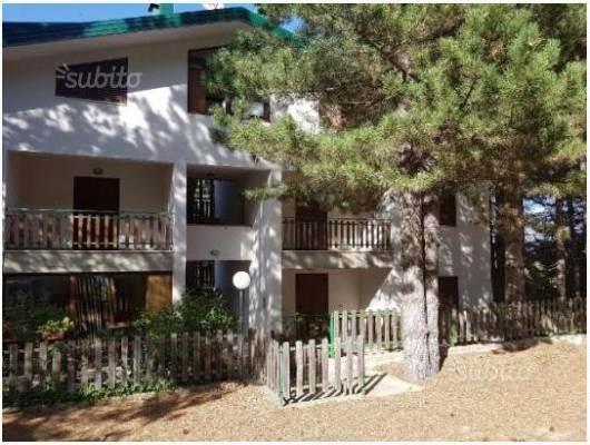 Appartamento in vendita a Spezzano della Sila, 3 locali, prezzo € 35.000 | CambioCasa.it