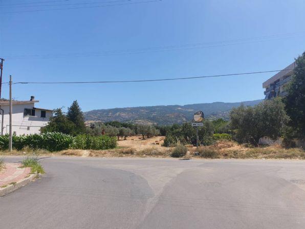 Terreno Agricolo in vendita a Montalto Uffugo, 9999 locali, zona Località: TAVERNA, prezzo € 50.000 | CambioCasa.it