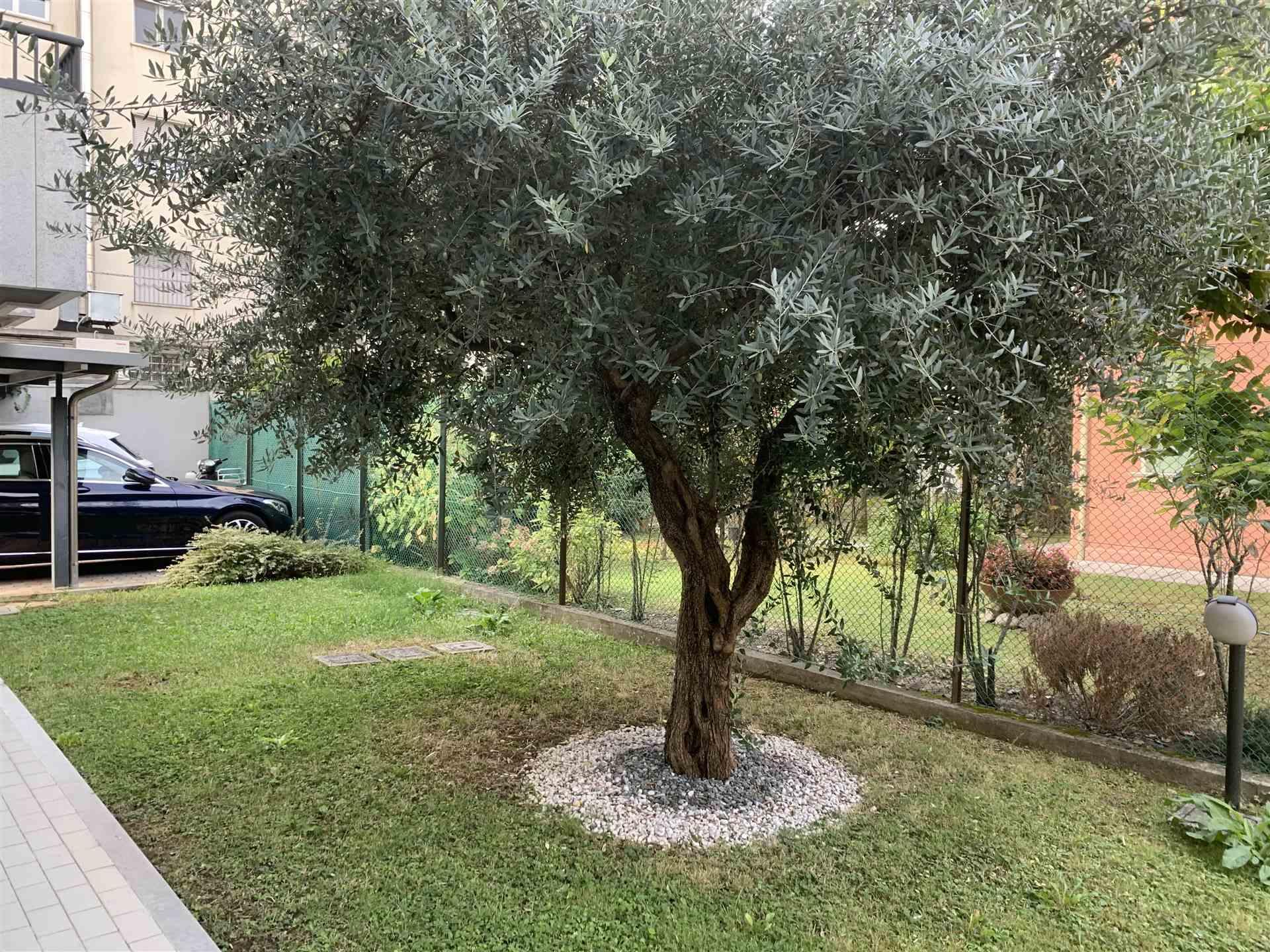 giardino Mestre in vendita appartamento spazioso