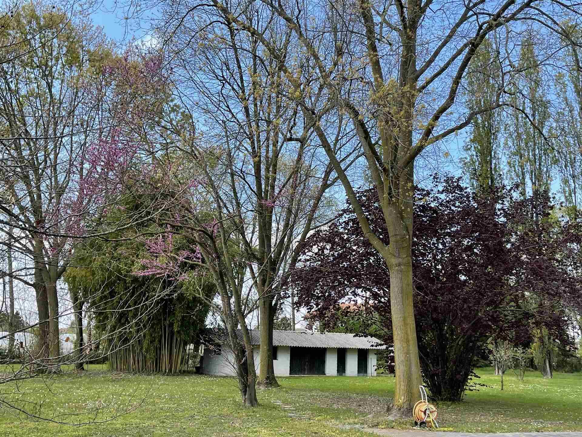 villa indipendente vendita Mestre Zelarino