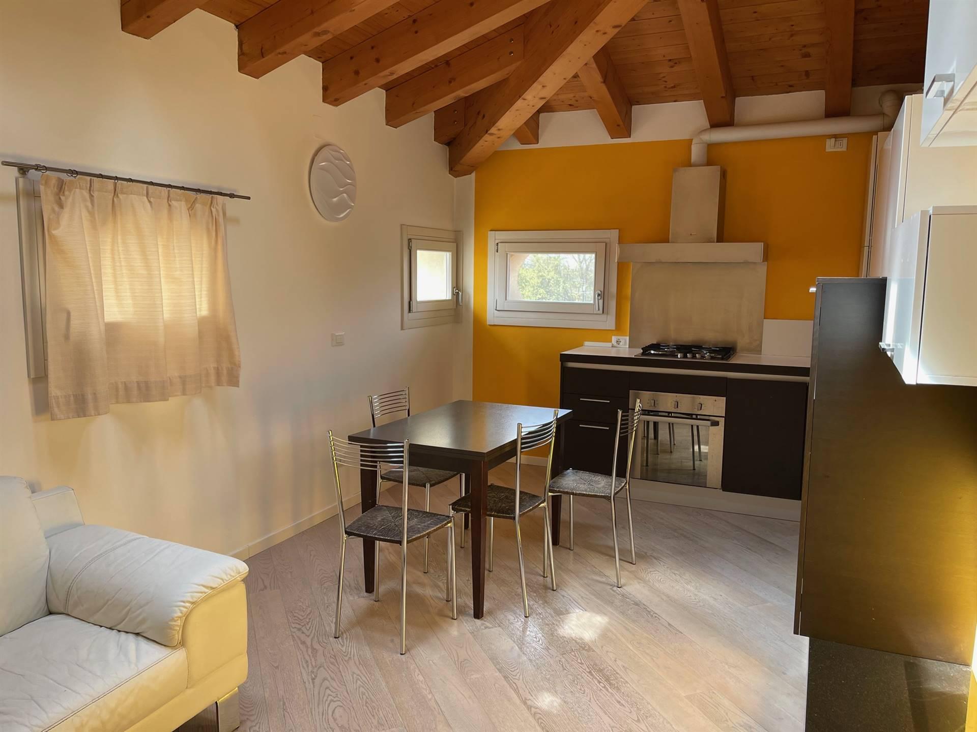 soggiorno cottura appartamento Zelarino