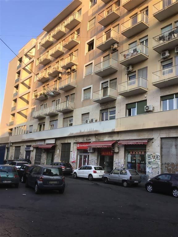 Quadrilocale, Catania, abitabile