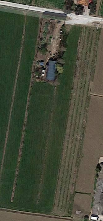 Terreno Agricolo in vendita a Savignano sul Rubicone, 9999 locali, prezzo € 40.000 | CambioCasa.it