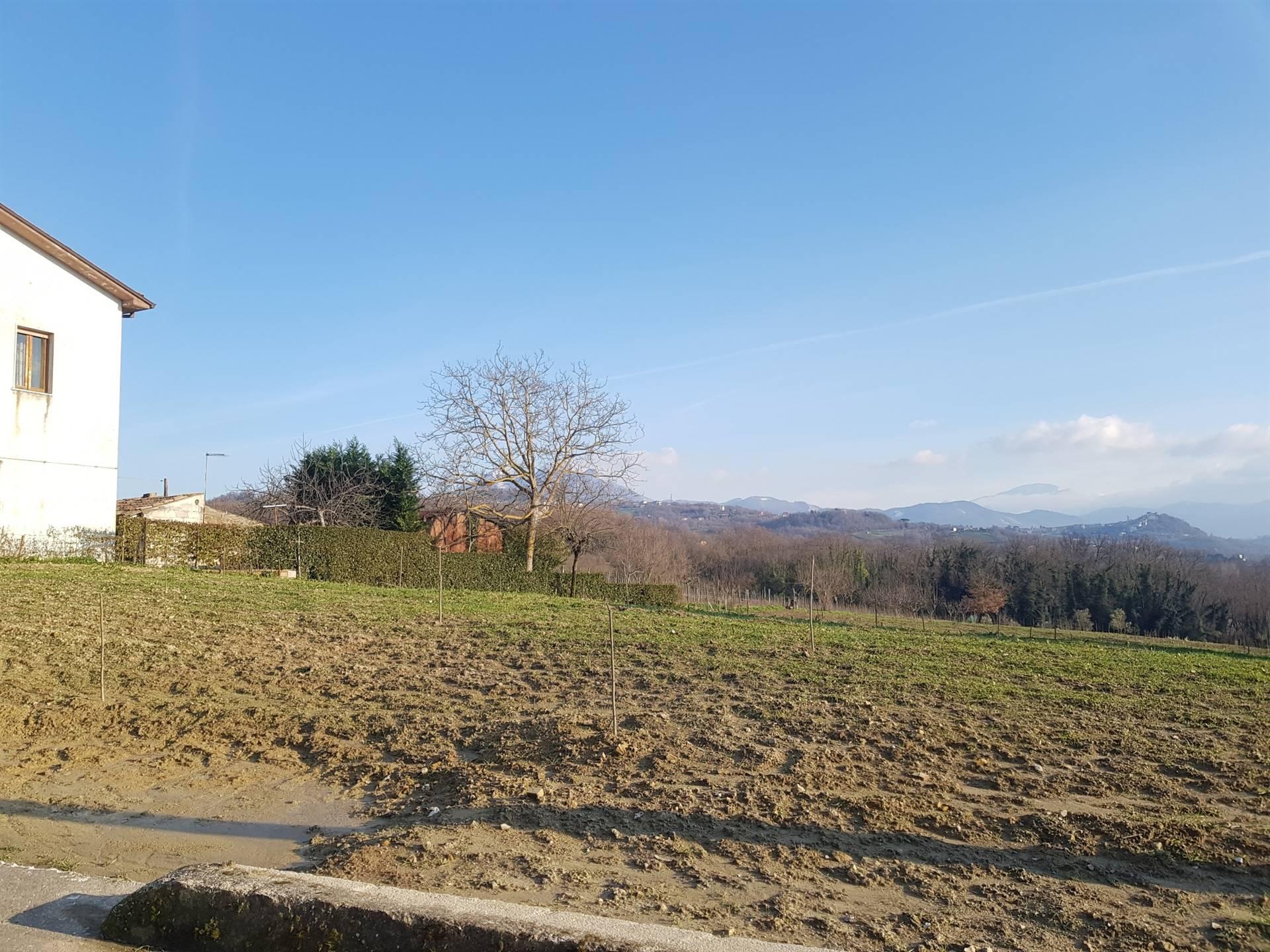 Terreno Agricolo in vendita a Pratola Serra, 9999 locali, zona Zona: San Michele, prezzo € 70.000 | CambioCasa.it
