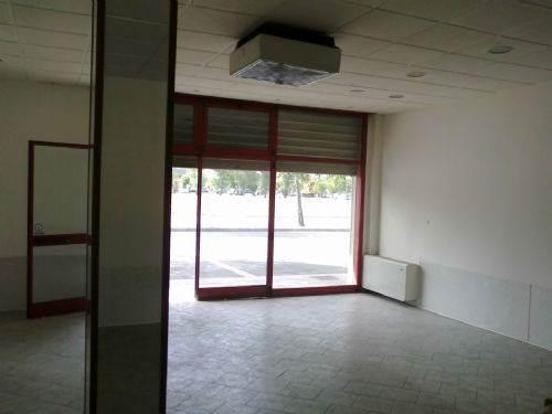 Negozio, Crocetta, Modena