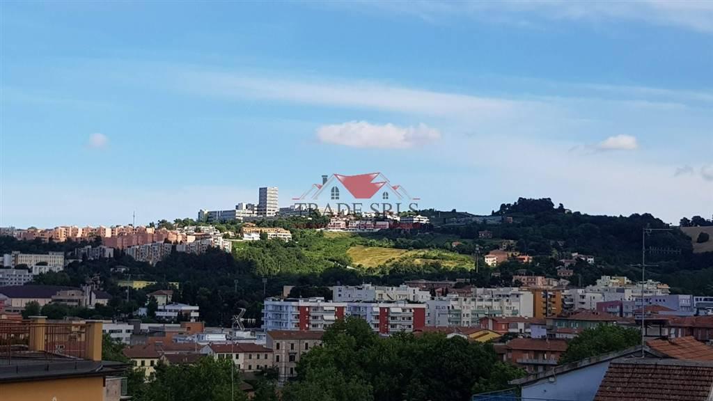 Quadrilocale, Ancona, abitabile