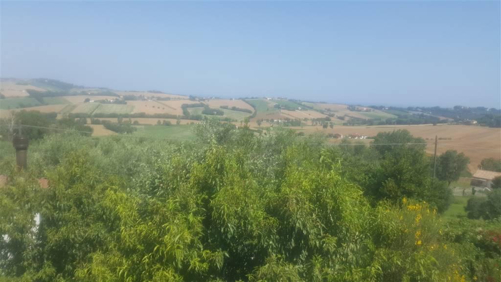 Quadrilocale, Sappanico, Ancona