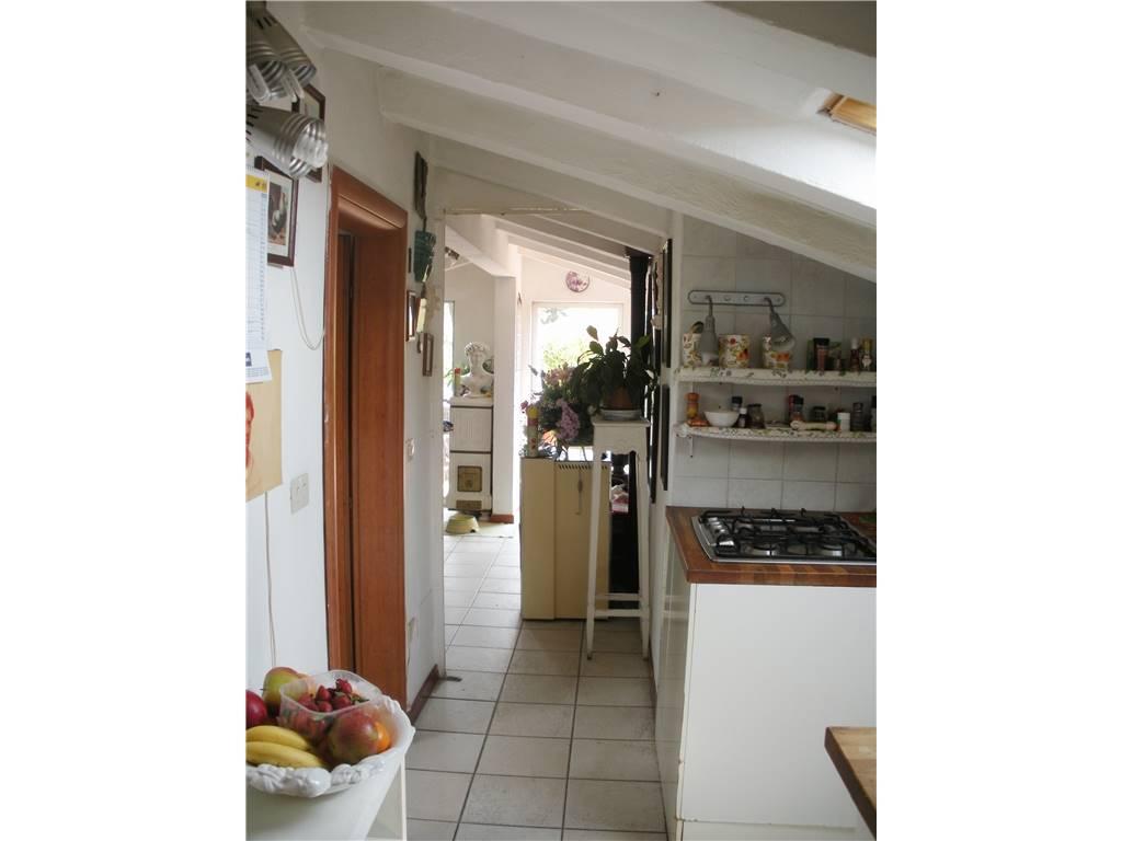 Come potrebbe essere la cucina