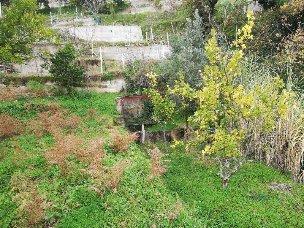Terreno Agricolo in vendita a Laganadi, 9999 locali, prezzo € 5.000 | PortaleAgenzieImmobiliari.it