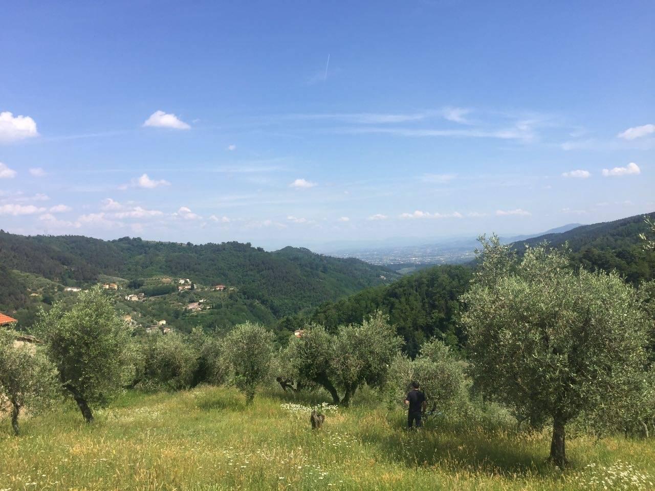 Pistoia, Località Montagnana: In posizione panoramica a pochi minuti dal centro della città di Pistoia, Vendesi piccolo fabbricato agricolo completamente di circa 25 mq completamente da ristrutturare