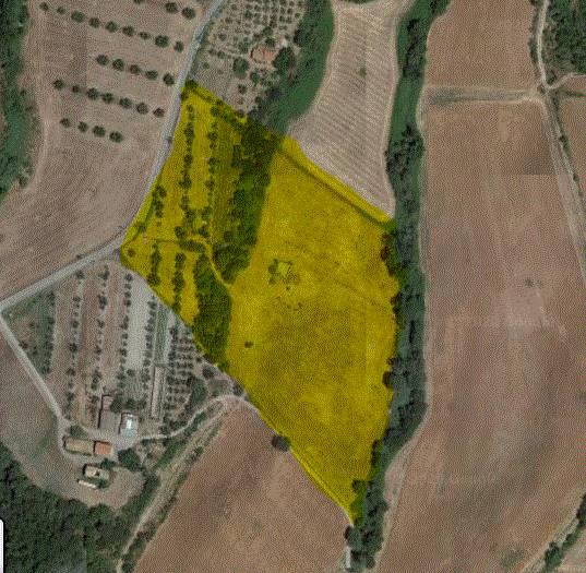 Terreno Agricolo in vendita a Tuscania, 1 locali, prezzo € 55.000 | CambioCasa.it