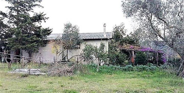 Azienda Agricola in vendita a Tuscania, 1 locali, prezzo € 70.000 | CambioCasa.it