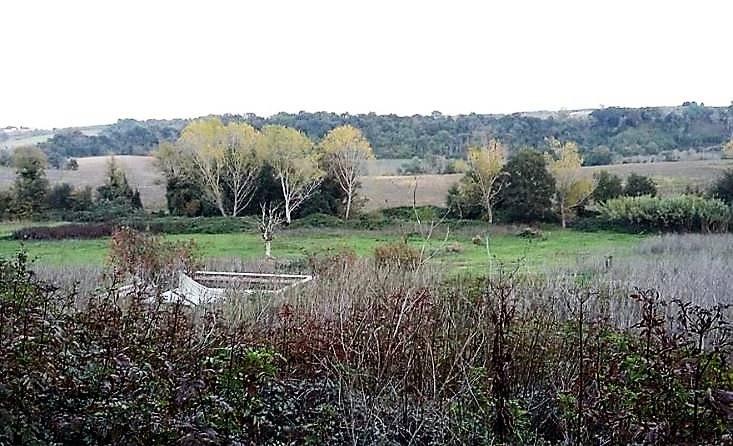 Azienda Agricola in vendita a Tuscania, 1 locali, prezzo € 55.000 | CambioCasa.it