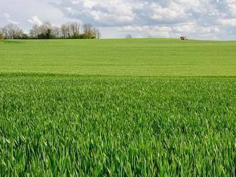 Azienda Agricola in vendita a Tuscania, 1 locali, prezzo € 160.000 | CambioCasa.it