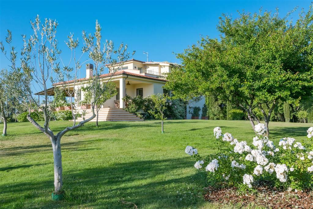 Villa lussuosa Montalto (VT)