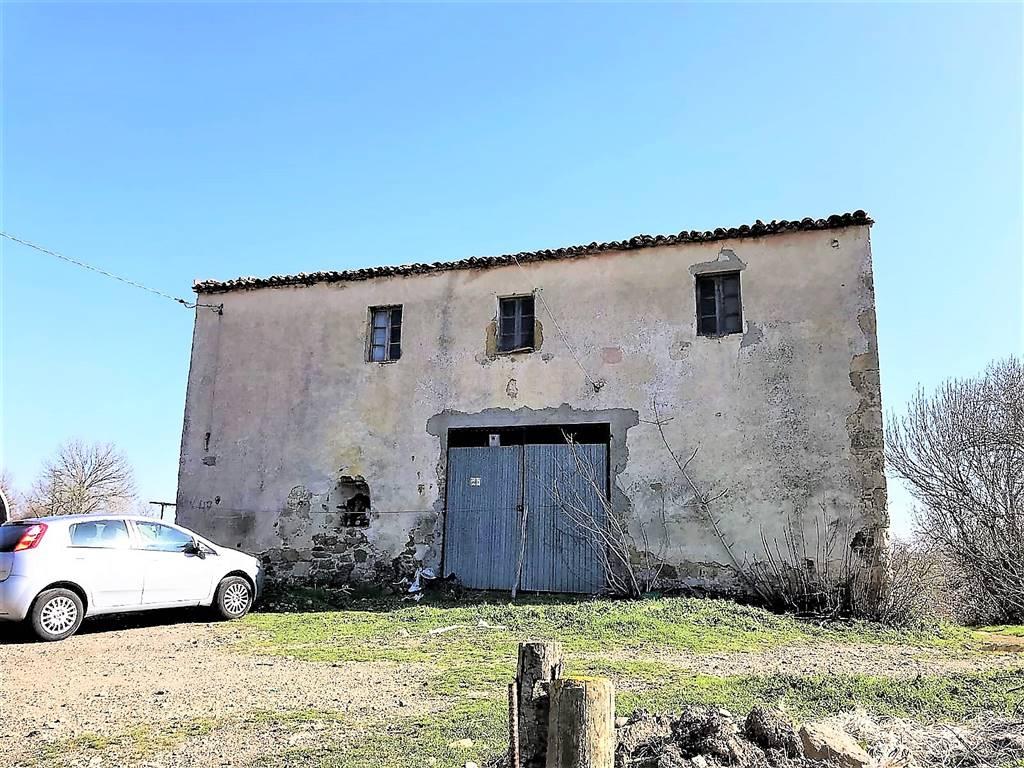 Azienda Agricola in vendita a Manciano, 5 locali, prezzo € 350.000   CambioCasa.it