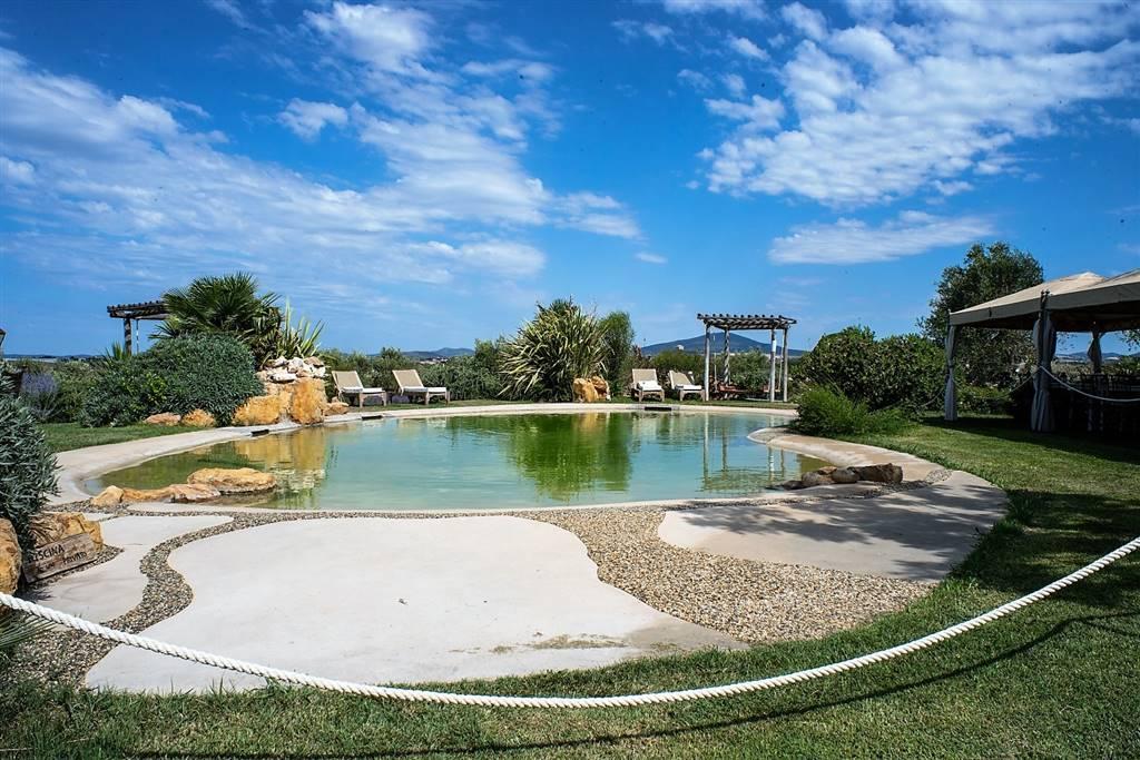 villa pescia romana con piscina