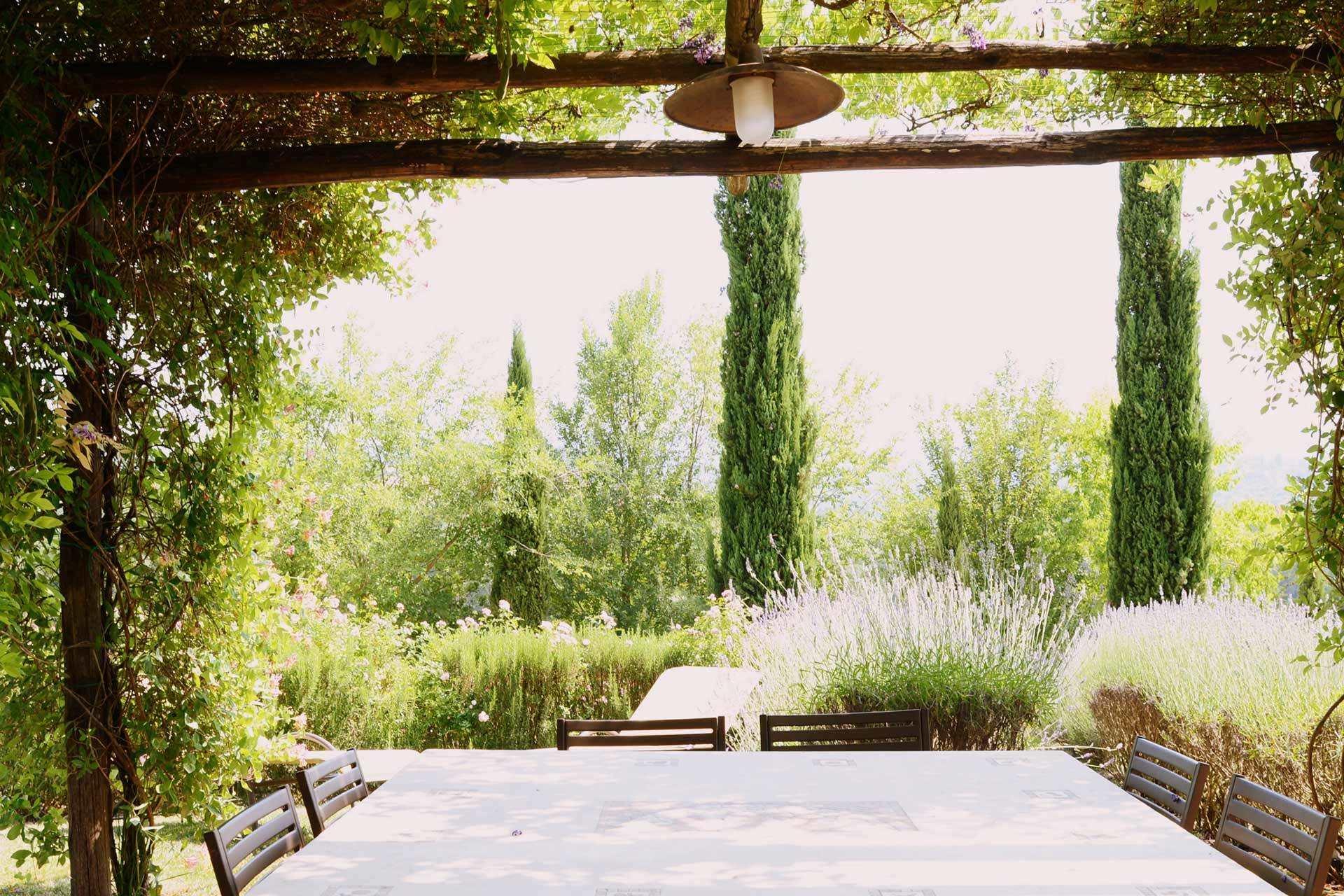 6211-giardino