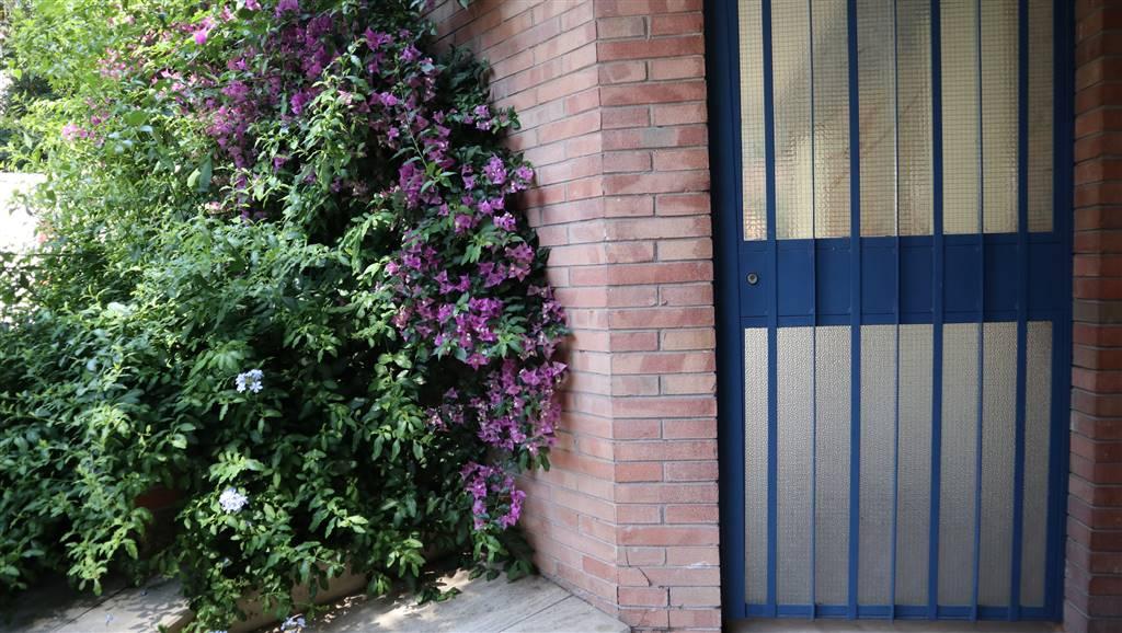 palazzo - facciata
