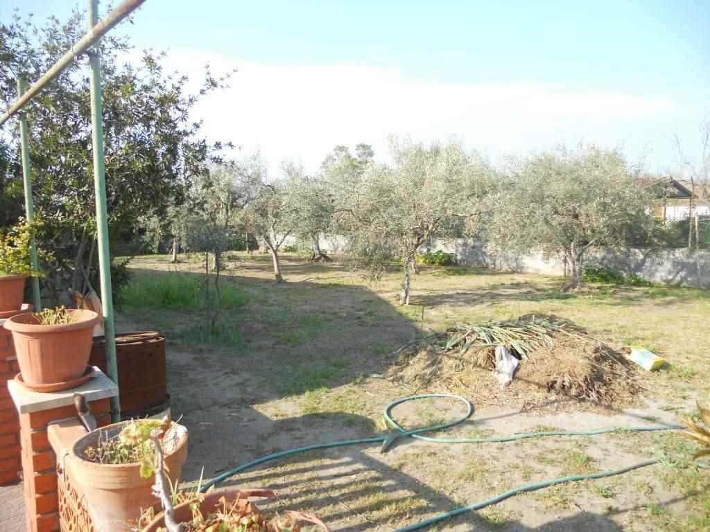 giardino lato destro