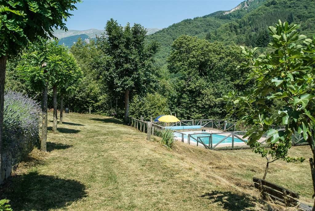 Panoramica terreno e piscina