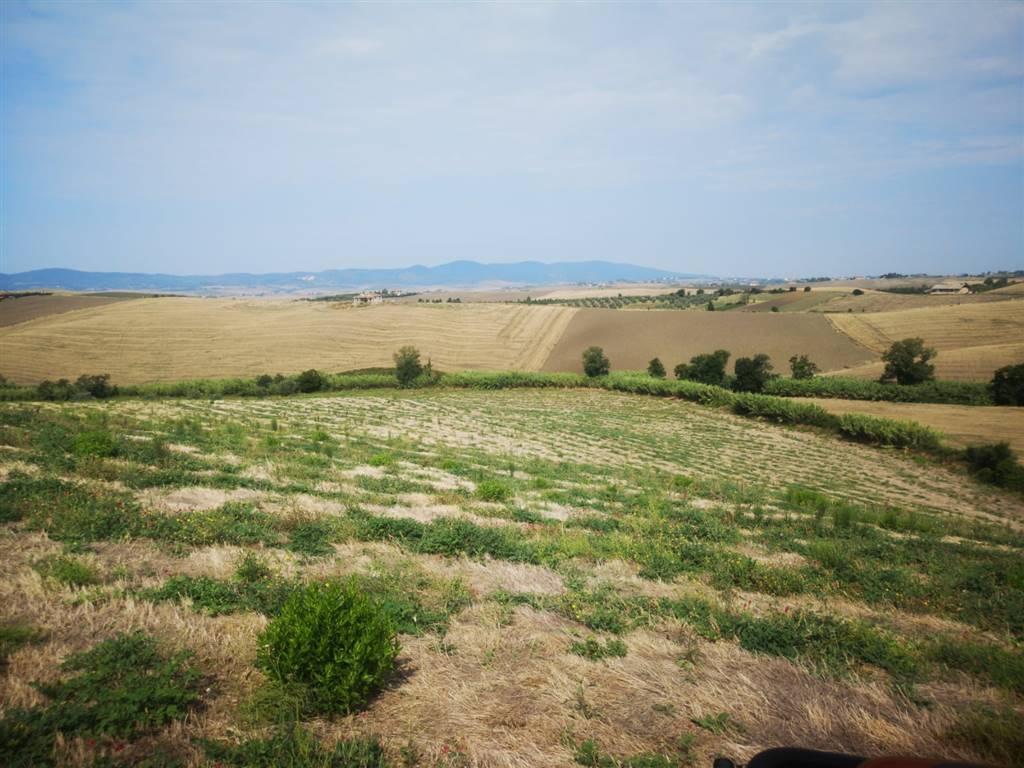 Terreno Agricolo in vendita a Santa Luce, 9999 locali, prezzo € 49.900 | PortaleAgenzieImmobiliari.it
