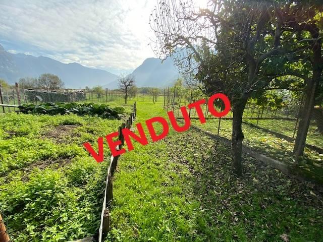 Terreno Agricolo in vendita a Samolaco, 9999 locali, zona Località: SAN PIETRO, Trattative riservate | CambioCasa.it
