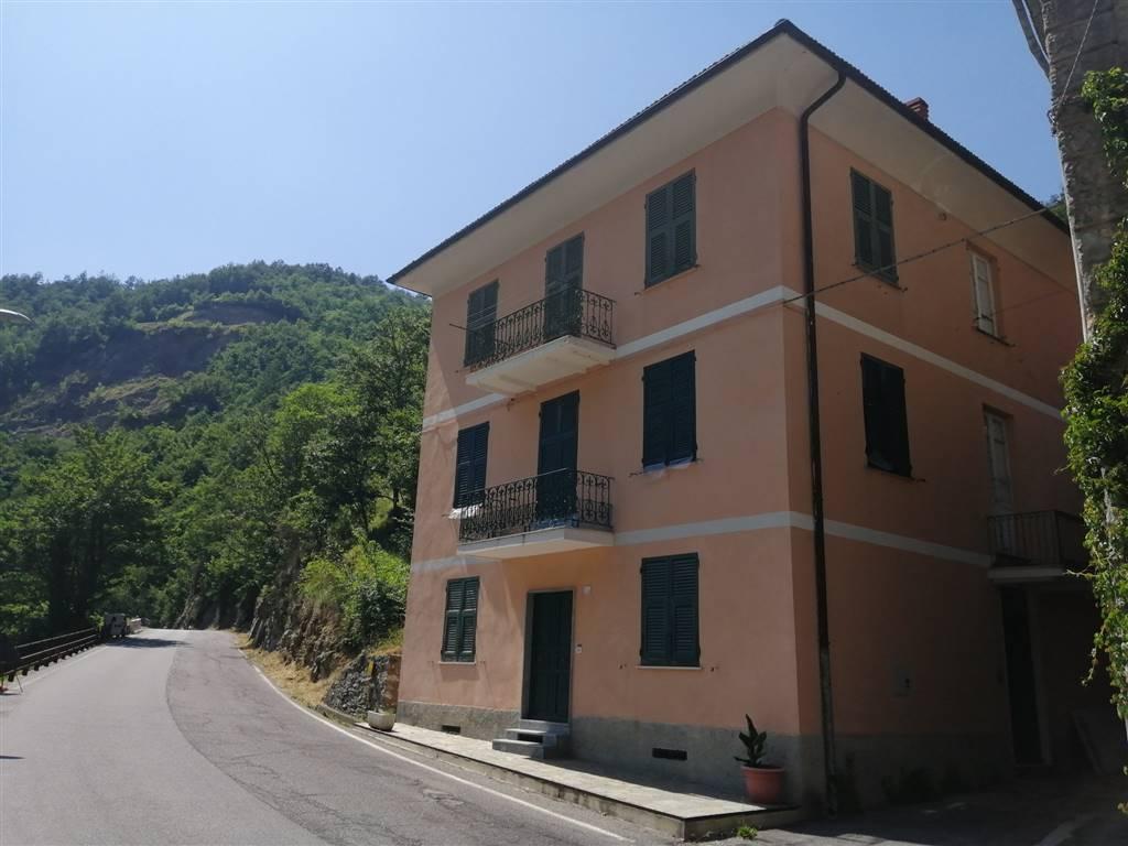 Ristrutturare Appartamento 35 Mq appartamento in vendita a montoggio genova trefontane