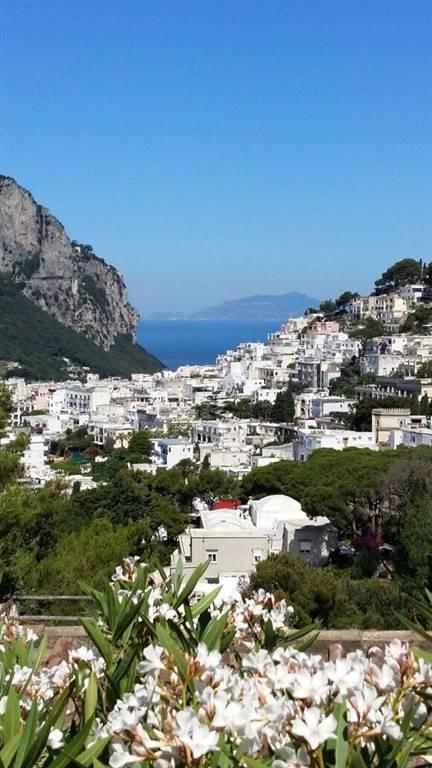 Quadrilocale, Marina Piccola, Capri, in ottime condizioni