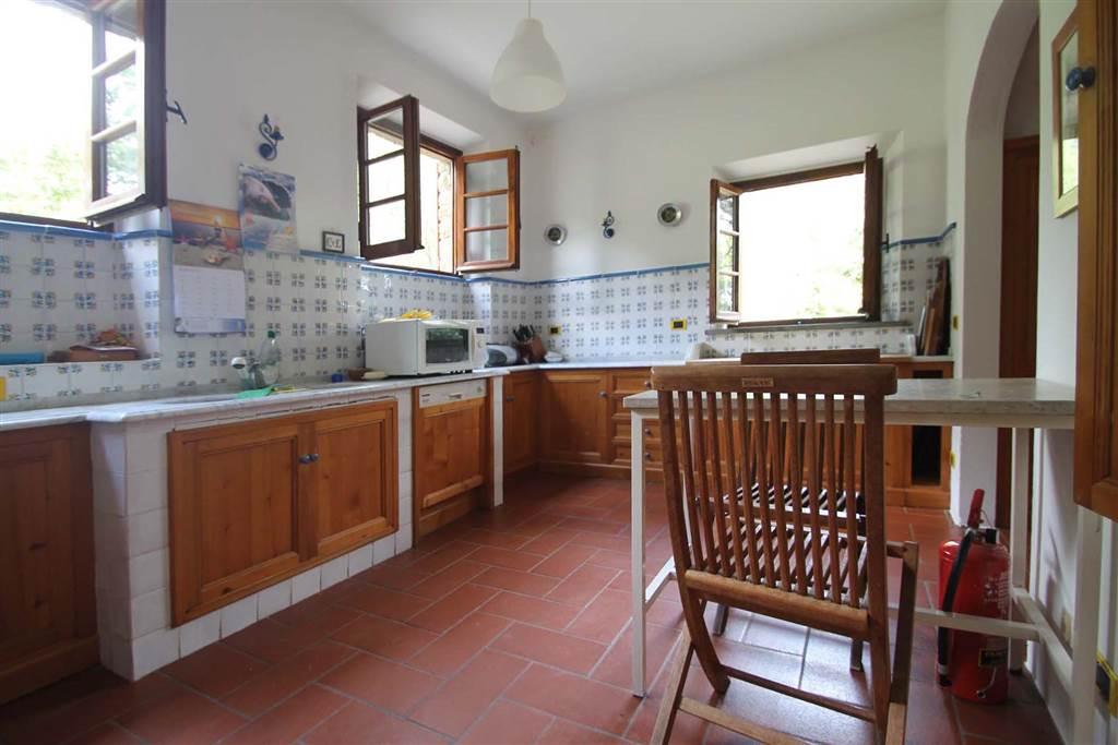 6190-cucina1