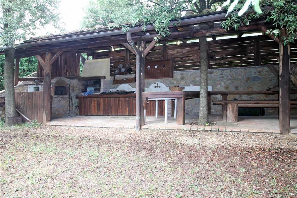 5959-area barbecue1