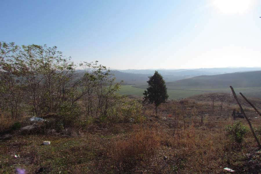 3539 panorama2