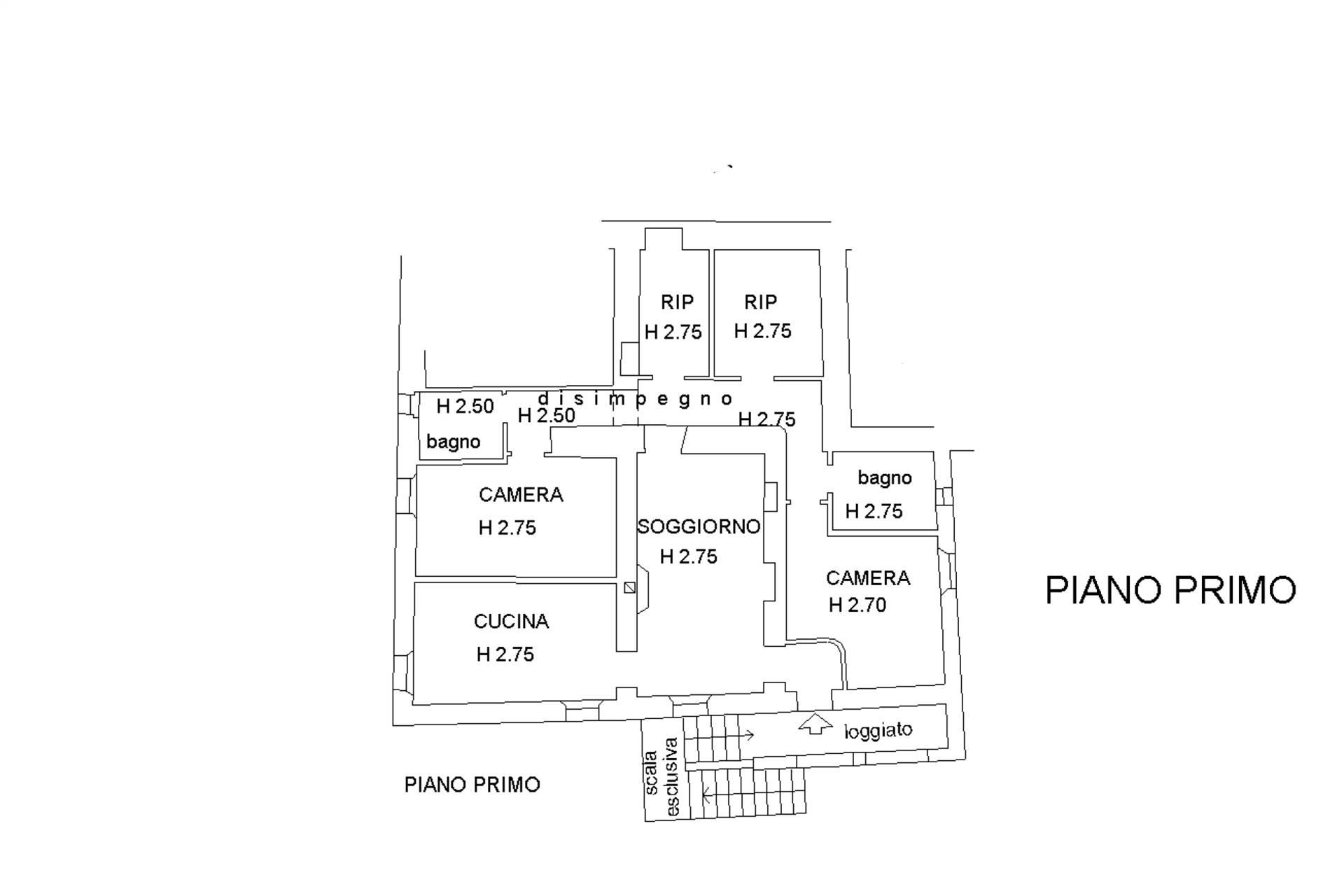 PlanP1