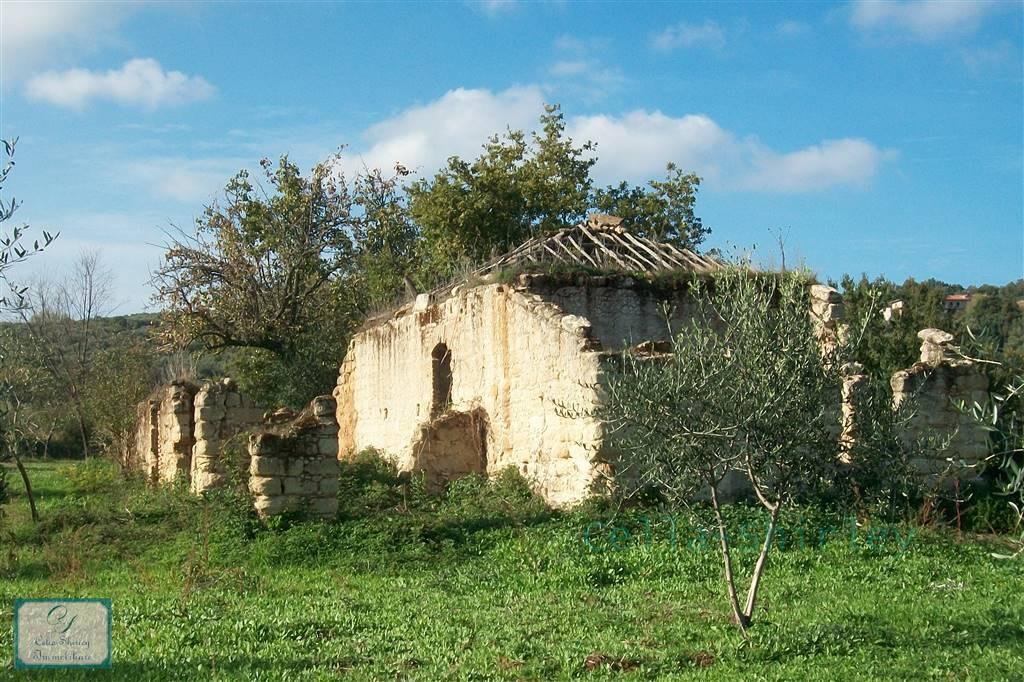Farm Land in Filandari VV