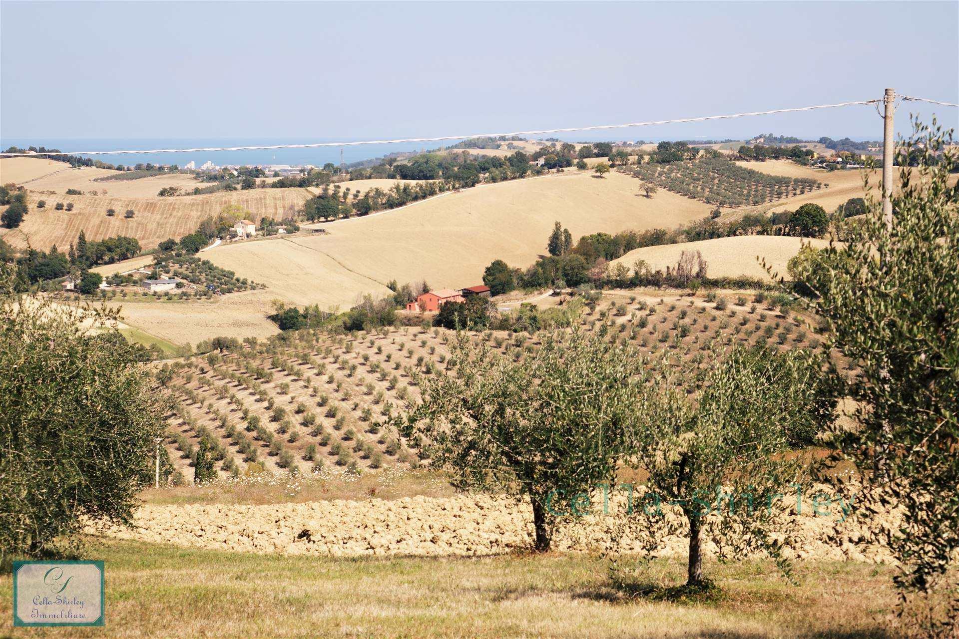 Farmhouse in Trecastelli AN