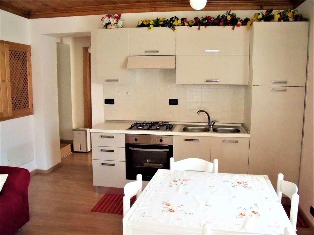 Appartamento, Auronzo Di Cadore, ristrutturato