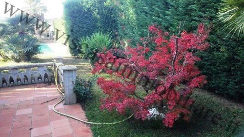 Villa, Cassano Delle Murge, in ottime condizioni