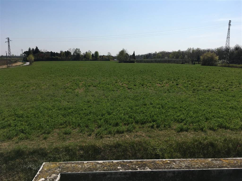 Terreno Agricolo in Vendita a Desenzano del Garda