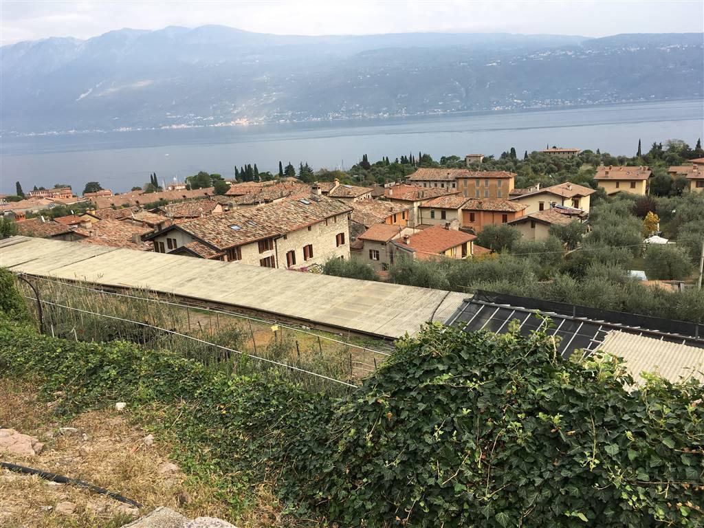 Foto giardino vista lago 2