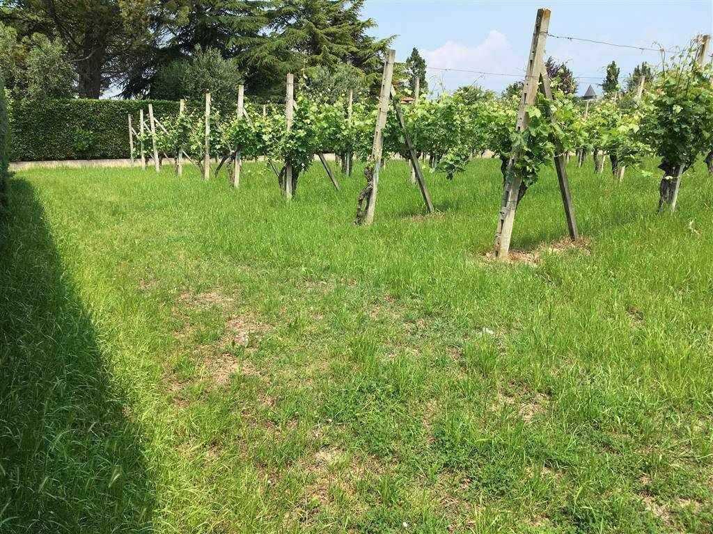 Terreno Edificabile Residenziale in vendita a Moniga del Garda, 9999 locali, Trattative riservate | CambioCasa.it