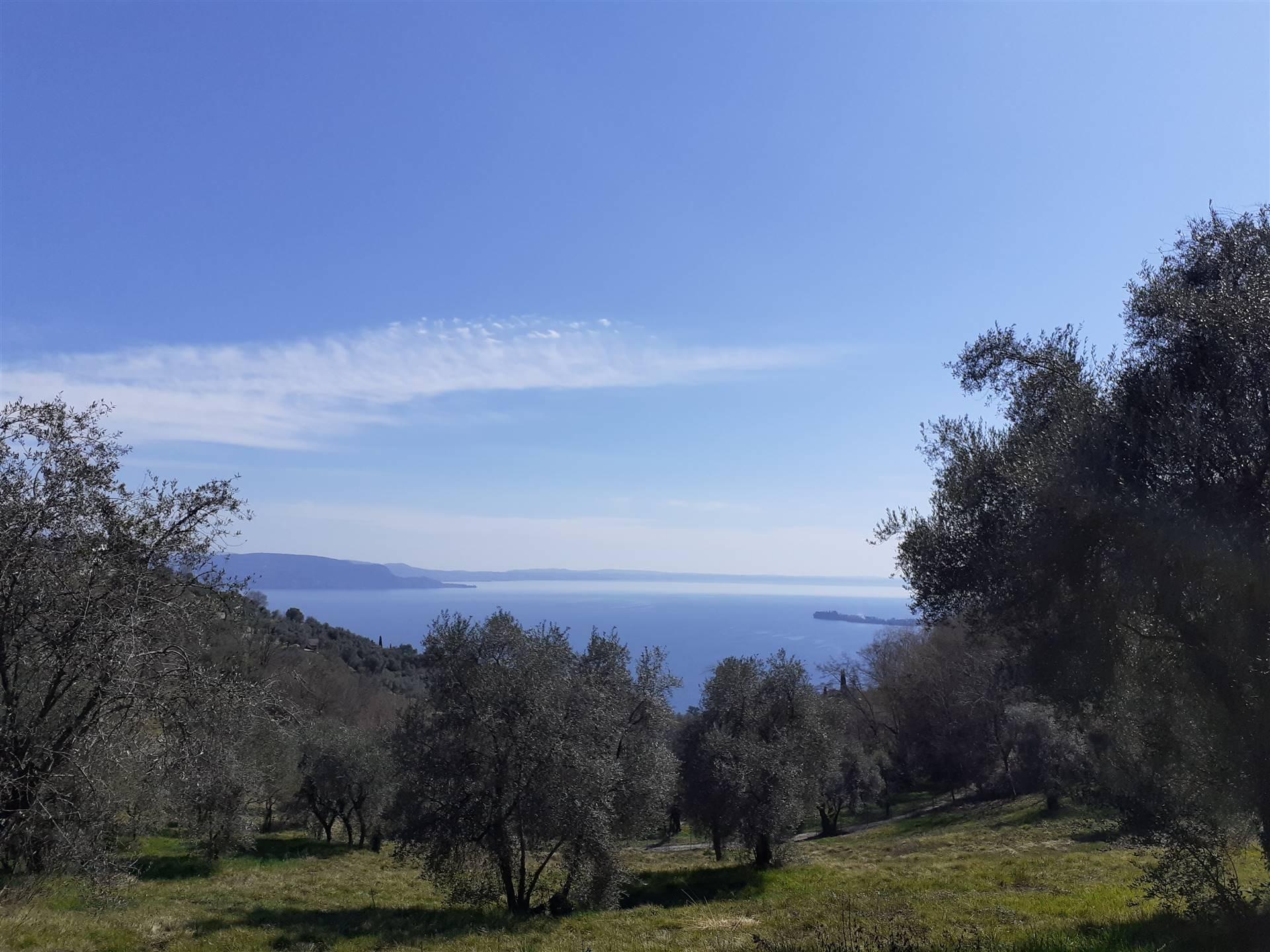 Terreno Agricolo in vendita a Gardone Riviera, 1 locali, zona Michele, prezzo € 240.000 | PortaleAgenzieImmobiliari.it