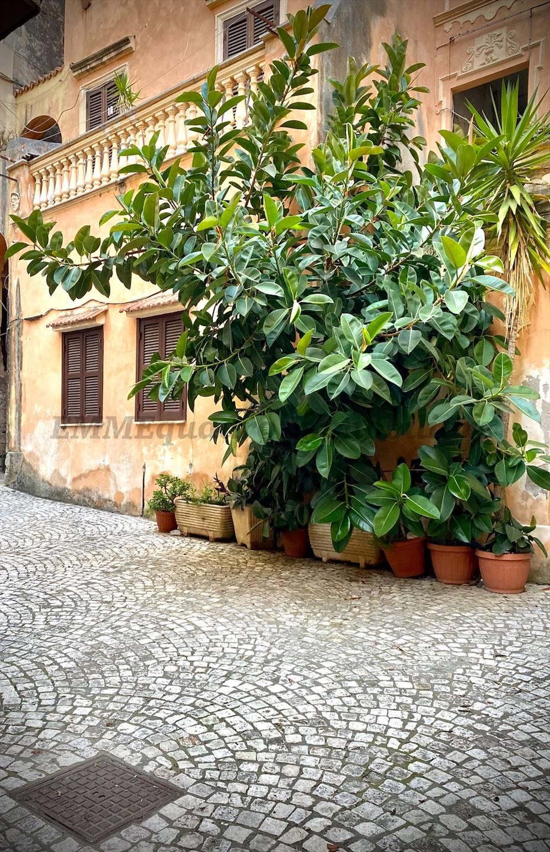 Foto -  In Vendita Terracina
