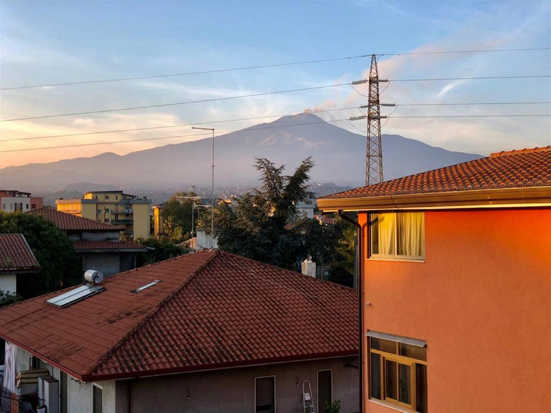 Vista panoramica Etna