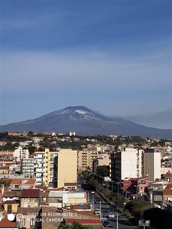 Appartamento in Via Sabato Martelli Castaldi 23, Viale M. Rapisardi - Lavaggi, Catania
