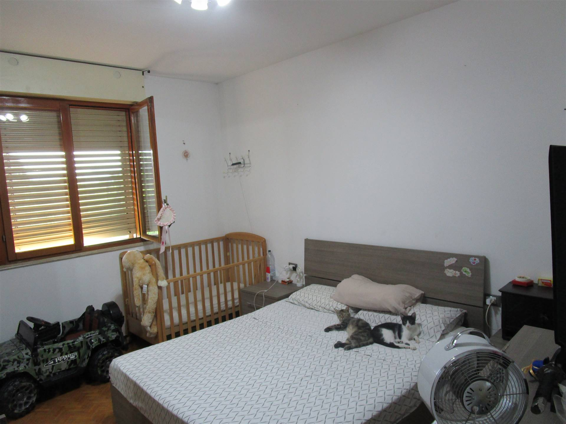Appartamento in Vendita a Prato zona Fontanelle - immagine 4