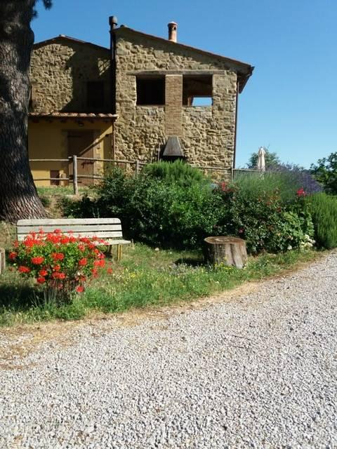 Tenuta-Complesso in Vendita a Roccalbegna zona Cana - immagine 10