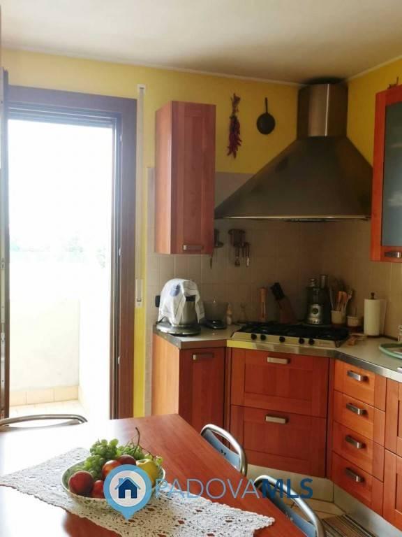 Appartamento in vendita a Albignasego, 5 locali, zona Giacomo, prezzo € 145.000 | PortaleAgenzieImmobiliari.it