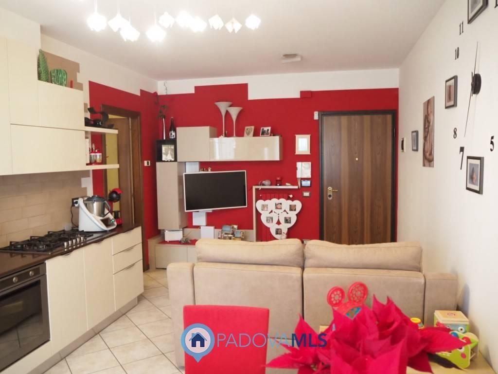 Appartamento in vendita a Torreglia, 3 locali, prezzo € 139.500 | CambioCasa.it